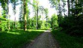 Randonnée Marche LONGPONT - en foret de Retz_33_Longpont_Vouty_Faverolles_AR - Photo 22