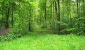 Randonnée Marche LONGPONT - en foret de Retz_33_Longpont_Vouty_Faverolles_AR - Photo 165