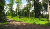Randonnée Marche LONGPONT - en foret de Retz_33_Longpont_Vouty_Faverolles_AR - Photo 110