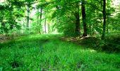 Randonnée Marche LONGPONT - en foret de Retz_33_Longpont_Vouty_Faverolles_AR - Photo 30