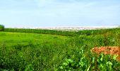 Randonnée Marche LONGPONT - en foret de Retz_33_Longpont_Vouty_Faverolles_AR - Photo 155