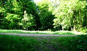 Randonnée Marche LONGPONT - en foret de Retz_33_Longpont_Vouty_Faverolles_AR - Photo 15