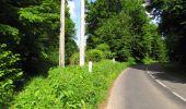 Randonnée Marche LONGPONT - en foret de Retz_33_Longpont_Vouty_Faverolles_AR - Photo 79