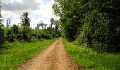 Randonnée Marche LONGPONT - en foret de Retz_33_Longpont_Vouty_Faverolles_AR - Photo 91