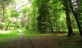 Randonnée Marche LONGPONT - en foret de Retz_33_Longpont_Vouty_Faverolles_AR - Photo 127