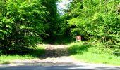Randonnée Marche LONGPONT - en foret de Retz_33_Longpont_Vouty_Faverolles_AR - Photo 143