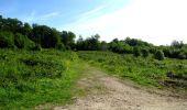 Randonnée Marche LONGPONT - en foret de Retz_33_Longpont_Vouty_Faverolles_AR - Photo 40