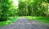 Randonnée Marche LONGPONT - en foret de Retz_33_Longpont_Vouty_Faverolles_AR - Photo 32