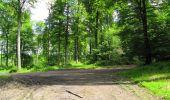 Randonnée Marche LONGPONT - en foret de Retz_33_Longpont_Vouty_Faverolles_AR - Photo 108