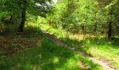 Randonnée Marche LONGPONT - en foret de Retz_33_Longpont_Vouty_Faverolles_AR - Photo 126