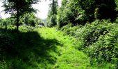 Randonnée Marche LONGPONT - en foret de Retz_33_Longpont_Vouty_Faverolles_AR - Photo 39