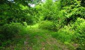 Randonnée Marche LONGPONT - en foret de Retz_33_Longpont_Vouty_Faverolles_AR - Photo 97