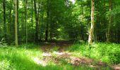 Randonnée Marche LONGPONT - en foret de Retz_33_Longpont_Vouty_Faverolles_AR - Photo 87