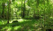 Randonnée Marche LONGPONT - en foret de Retz_33_Longpont_Vouty_Faverolles_AR - Photo 138