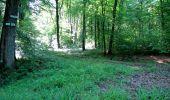 Randonnée Marche LONGPONT - en foret de Retz_33_Longpont_Vouty_Faverolles_AR - Photo 23