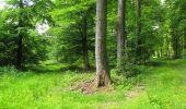 Randonnée Marche LONGPONT - en foret de Retz_33_Longpont_Vouty_Faverolles_AR - Photo 107
