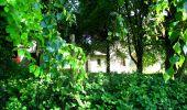 Randonnée Marche LONGPONT - en foret de Retz_33_Longpont_Vouty_Faverolles_AR - Photo 70