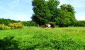 Randonnée Marche LONGPONT - en foret de Retz_33_Longpont_Vouty_Faverolles_AR - Photo 66
