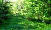 Randonnée Marche LONGPONT - en foret de Retz_33_Longpont_Vouty_Faverolles_AR - Photo 9