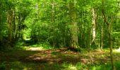 Randonnée Marche LONGPONT - en foret de Retz_33_Longpont_Vouty_Faverolles_AR - Photo 135