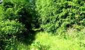 Randonnée Marche LONGPONT - en foret de Retz_33_Longpont_Vouty_Faverolles_AR - Photo 38