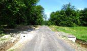 Randonnée Marche LONGPONT - en foret de Retz_33_Longpont_Vouty_Faverolles_AR - Photo 46