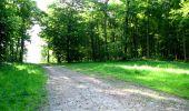 Randonnée Marche LONGPONT - en foret de Retz_33_Longpont_Vouty_Faverolles_AR - Photo 16