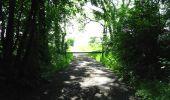 Randonnée Marche LONGPONT - en foret de Retz_33_Longpont_Vouty_Faverolles_AR - Photo 49