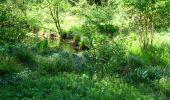 Randonnée Marche LONGPONT - en foret de Retz_33_Longpont_Vouty_Faverolles_AR - Photo 10