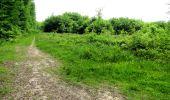 Randonnée Marche LONGPONT - en foret de Retz_33_Longpont_Vouty_Faverolles_AR - Photo 133