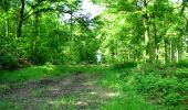 Randonnée Marche LONGPONT - en foret de Retz_33_Longpont_Vouty_Faverolles_AR - Photo 21