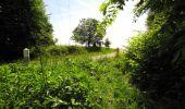 Randonnée Marche LONGPONT - en foret de Retz_33_Longpont_Vouty_Faverolles_AR - Photo 80