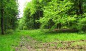 Randonnée Marche LONGPONT - en foret de Retz_33_Longpont_Vouty_Faverolles_AR - Photo 166