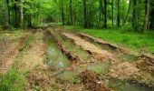 Randonnée Marche LONGPONT - en foret de Retz_33_Longpont_Vouty_Faverolles_AR - Photo 167