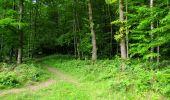 Randonnée Marche LONGPONT - en foret de Retz_33_Longpont_Vouty_Faverolles_AR - Photo 132
