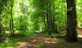 Randonnée Marche LONGPONT - en foret de Retz_33_Longpont_Vouty_Faverolles_AR - Photo 128