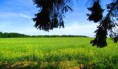 Randonnée Marche LONGPONT - en foret de Retz_33_Longpont_Vouty_Faverolles_AR - Photo 152