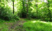 Randonnée Marche LONGPONT - en foret de Retz_33_Longpont_Vouty_Faverolles_AR - Photo 115