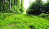 Randonnée Marche LONGPONT - en foret de Retz_33_Longpont_Vouty_Faverolles_AR - Photo 106
