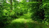 Randonnée Marche LONGPONT - en foret de Retz_33_Longpont_Vouty_Faverolles_AR - Photo 99