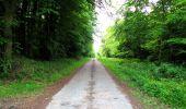 Randonnée Marche LONGPONT - en foret de Retz_33_Longpont_Vouty_Faverolles_AR - Photo 84