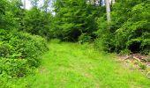 Randonnée Marche LONGPONT - en foret de Retz_33_Longpont_Vouty_Faverolles_AR - Photo 101