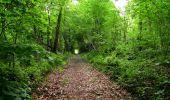 Randonnée Marche LONGPONT - en foret de Retz_33_Longpont_Vouty_Faverolles_AR - Photo 140