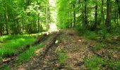 Randonnée Marche LONGPONT - en foret de Retz_33_Longpont_Vouty_Faverolles_AR - Photo 88