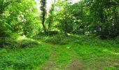Randonnée Marche LONGPONT - en foret de Retz_33_Longpont_Vouty_Faverolles_AR - Photo 114