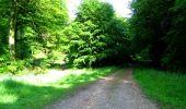 Randonnée Marche LONGPONT - en foret de Retz_33_Longpont_Vouty_Faverolles_AR - Photo 17