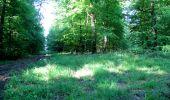 Randonnée Marche LONGPONT - en foret de Retz_33_Longpont_Vouty_Faverolles_AR - Photo 24