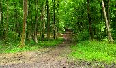 Randonnée Marche LONGPONT - en foret de Retz_33_Longpont_Vouty_Faverolles_AR - Photo 168