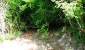 Randonnée Marche LONGPONT - en foret de Retz_33_Longpont_Vouty_Faverolles_AR - Photo 3