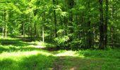 Randonnée Marche LONGPONT - en foret de Retz_33_Longpont_Vouty_Faverolles_AR - Photo 116